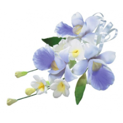 Culpitt - Orchidee spray,...